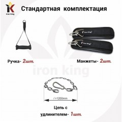 Социальный многофункциональный тренажер Iron King IK 29 (тренажер Бубновского)