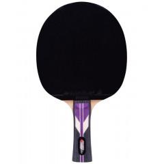 Ракетка для настольного тенниса Roxel Stellar 4*